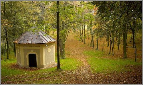 Zdjęcie POLSKA / woj.Opolskie / Góra Świętej Anny / moja jesień 4