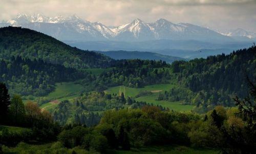 Zdjecie POLSKA / Pieniny / Palenica / Widoki z Palenicy