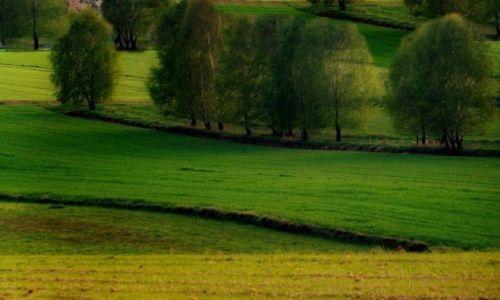 Zdjęcie POLSKA / łódzkie / .... / Wiosenne pola