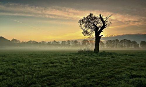 Zdjęcie POLSKA /  pow. Żniński / Antoniewo / Piękny wschód śłońca