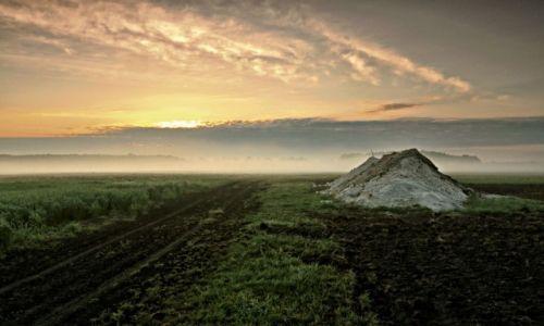 Zdjęcie POLSKA /  pow. Żniński / Antoniewo / Mgła przywarła nisko