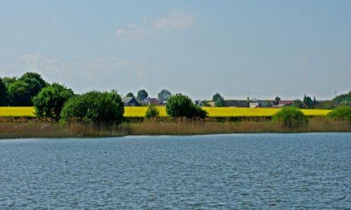 Zdjęcie POLSKA / Kuj-pom / Biskupin / Jezioro Biskupińskie.