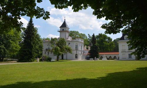 Zdjęcie POLSKA / mazowsze / Radziejowice / Zespół pałacowo-parkowy w Radziejowicach