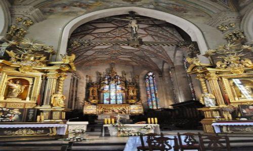 Zdjęcie POLSKA / Podkarpacie / Przemyśl / Przemyśl, katedra