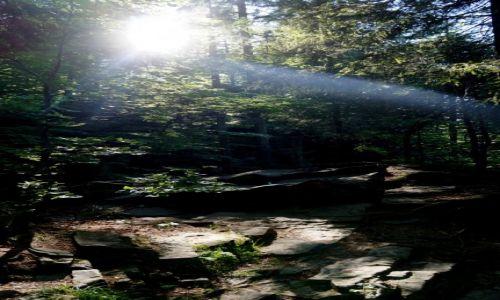 Zdjęcie POLSKA / śląskie / Beskid Śląski / Dolina Białej Wisełki