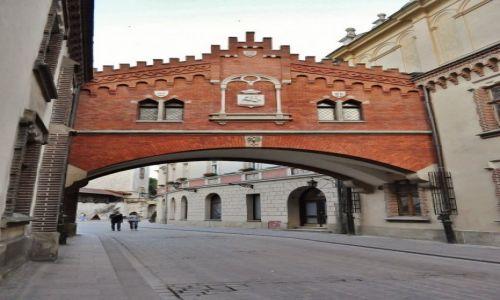Zdjęcie POLSKA / Małopolska / Kraków / Kraków, muzeum Czartoryskich
