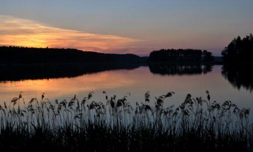 Zdjecie POLSKA / Mazury / Jezioro Zyzdrój Wielki / Widok na Wyspę Miłości