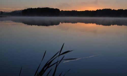 Zdjęcie POLSKA / Mazury / Jezioro Białe / Poranny samolot