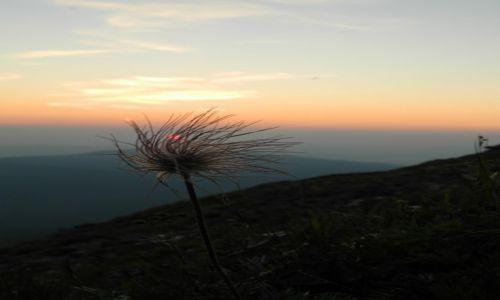 Zdjecie POLSKA / beskidy / babia góra / wschód na Babiej Górze,,,