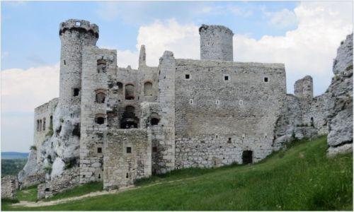 Zdjecie POLSKA / Małopolska / Podzamcze, ruiny zamku Ogrodzieniec / wśród szarych skał...