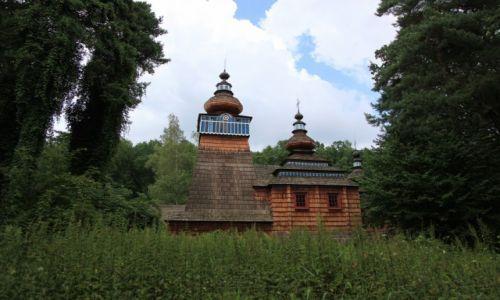 Zdjęcie POLSKA / Podkarpackie / Muzeum Budownictwa Ludowego w Sanoku / Za ścianą pokrzyw