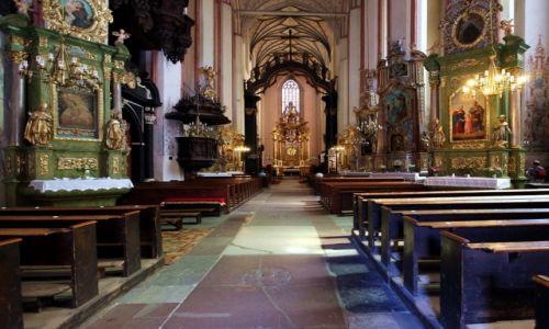 Zdjęcie POLSKA / Toruń / Kościół Wniebowzięcia Najświętszej Marii Panny / Nawa główna
