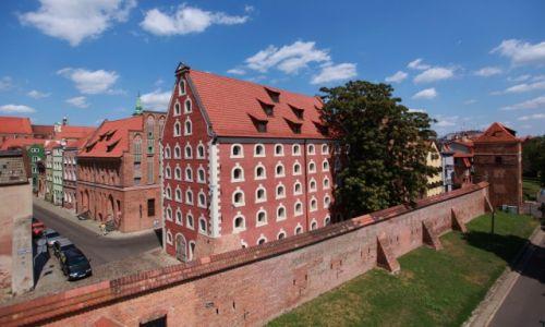 Zdjecie POLSKA / Toruń / Stare Miasto / Mury starego miasta