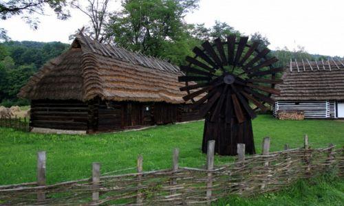 Zdjęcie POLSKA / Podkarpackie / Muzeum Budownictwa Ludowego w Sanoku / Młyn wiatrowy, typu