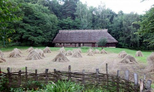 Zdjęcie POLSKA / Podkarpackie / Muzeum Budownictwa Ludowego w Sanoku / Żniwa
