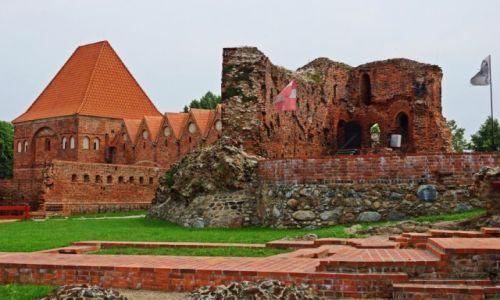 Zdjecie POLSKA / Kuj-pom / Toruń / Ruiny zamku krzyżackiego