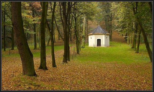 Zdjęcie POLSKA / Ślask Opolski / Góra Świętej Anny / jesień c.d.