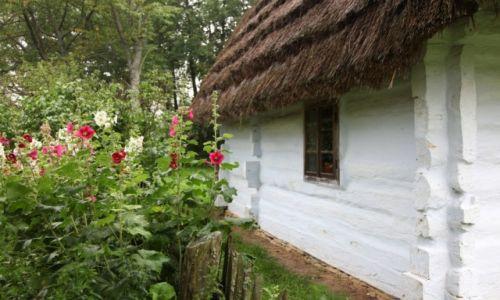 Zdjęcie POLSKA / Podkarpackie / Muzeum Budownictwa Ludowego w Sanoku / Domek pod malwami