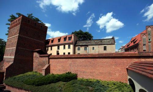 Zdjęcie POLSKA / Roruń / Bulwar Filadelfijski / Mury Starego Miasta z Krzywą Wieżą
