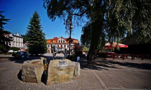 Zdjęcie POLSKA / Małopolska / Sucha Beskidzka / Pomnik fontanna