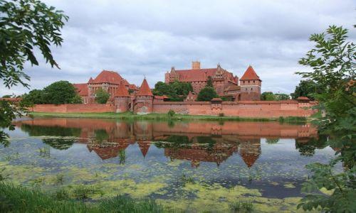 Zdjęcie POLSKA / Malbork / Widok zza rzeki Nogat / Gotycki zamek krzyżacki