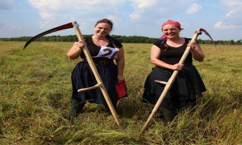 POLSKA / Podlasie / Biebrzański Park Narodowy / Kosiarki z Węgier
