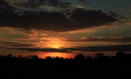 Zdjecie POLSKA / Podlasie / Biebrzański Park Narodowy / Zachód słońca nad Biebrzą