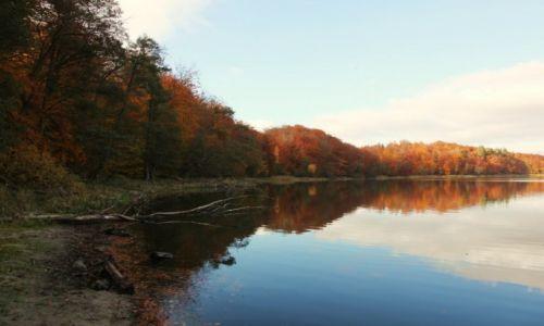 Zdjęcie POLSKA / Kolbudy / Otomiński Obszar Chronionego Krajobrazu / W lustrze wody