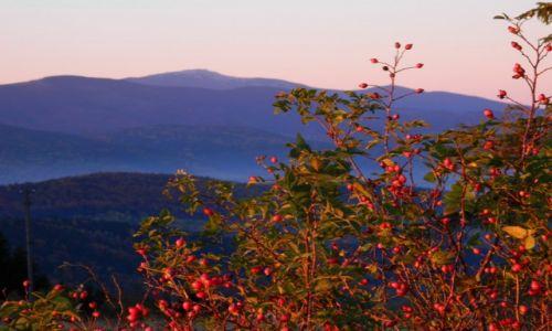 Zdjęcie POLSKA / beskid makowski / koskowa góra / widok na babią o wschodzie...