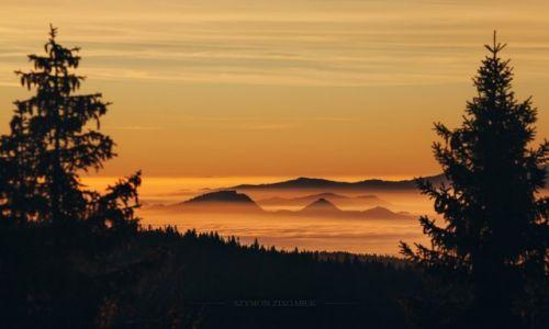 Zdjęcie POLSKA / Gorce / Schr. na Turbaczu / Ciepło rozlane na mgły