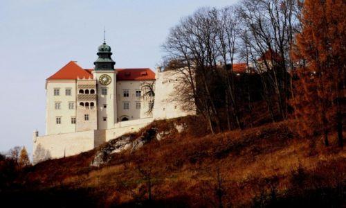 Zdjecie POLSKA / Małopolska / Pieskowa Skała  - zamek / na szlaku Orlich Gniazd...