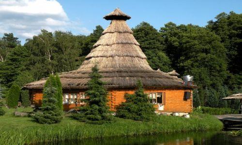 Zdjecie POLSKA / Łódź / Kluki / Restauraja trzciną kryta
