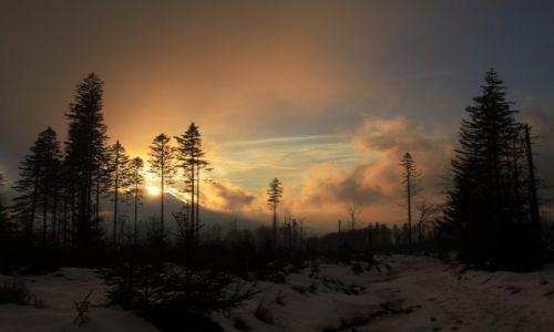 POLSKA / Beskid Śląski / Przełęcz Malinowska / Przełęcz Malinowska - słońca ręką malowana