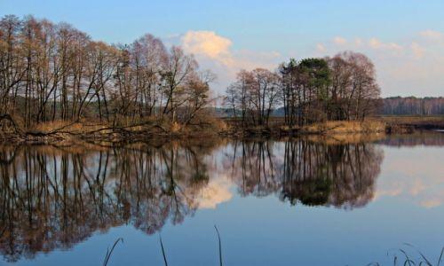 Zdjecie POLSKA / Śląskie / Miotek - Zielona / w lustrze natury