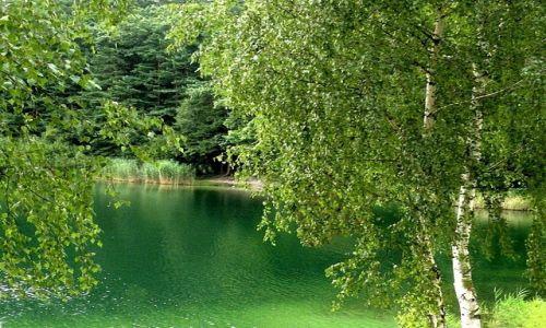 Zdjecie POLSKA / opolskie / niedaleko Turawy / Jezioro Srebrne (Szmaragdowe)