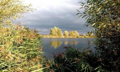 Zdjecie POLSKA / opolskie / niedaleko Turawy / Burzowo nad jeziorem