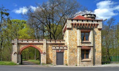 Zdjecie POLSKA / opolskie / Zamek w Dobrej / Brama zamkowa od strony drogi