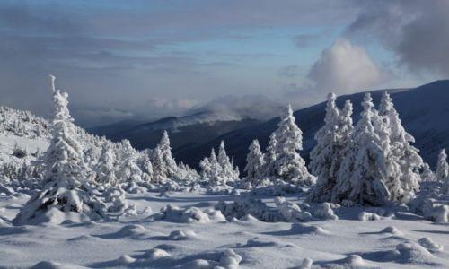 POLSKA / karkonosze / Ma�a Kopa / W zimowej szacie