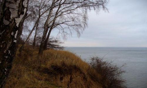 Zdjecie POLSKA / pomorskie / Osłonino / Klif   nad zatoką pucką