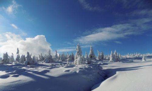 Zdjęcie POLSKA / Karkonosze / Karpacz / Pejzaż zimowy