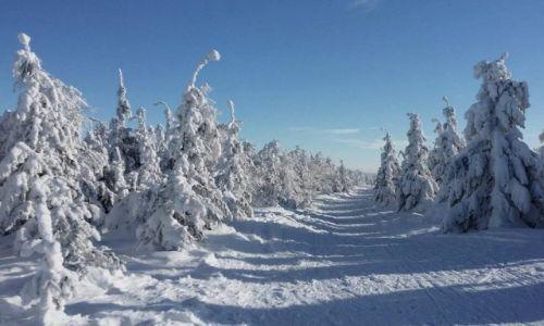POLSKA / Beskid �l�ski / Ma�e Skrzyczne / zabawy zim� 2