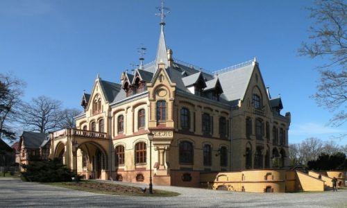 POLSKA / opolskie / Większyce / Pałac Większyce