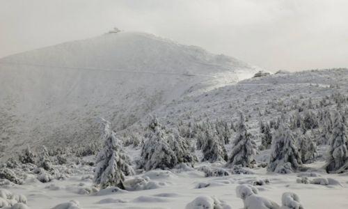 Zdjecie POLSKA / Jelenia Góra / Karkonosze / Śnieżka, czyli góra w śniegu