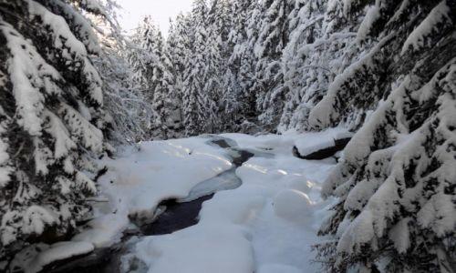 Zdjęcie POLSKA / Karkonosze / Szklarska Poręba / Wodospad Kamieńczyka, z góry