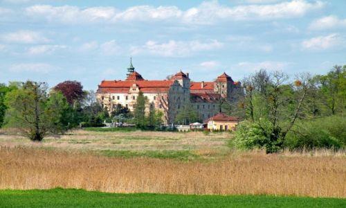 Zdjęcie POLSKA / opolskie / Niemodlin / Zamek w Niemodlinie