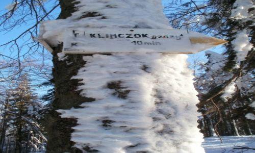Zdjecie POLSKA / Beskid �l�ski / prawie Klimczok / jest zima, to m