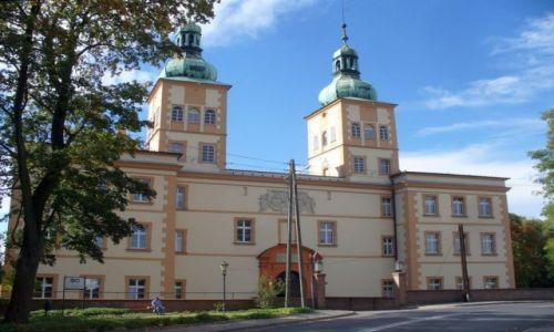 Zdjecie POLSKA / opolskie / Pruszk�w / Zamek w Pruszko