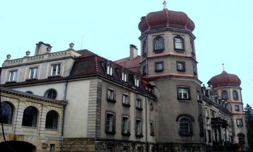 Zdjęcie POLSKA / śląskie / Brynek / Pałac w Brynku