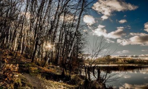 Zdjęcie POLSKA / Kaszuby / Kokoszki / w lutym nad jeziorem