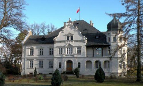 Zdjecie POLSKA / opolskie / Ziemiełowice / Pałac od strony DK 454